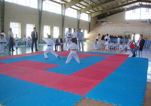 ورزشی های رزمی در شهر لایبید